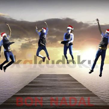 Bon Nadal 2020 (1).jpg